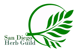 SDHG logo quarter