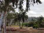 Oak Circle Vista